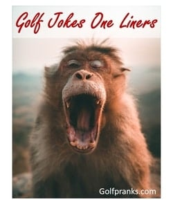 red chimp laughing at golf jokes on liners