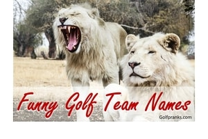 Lion laughing at funny golf team names